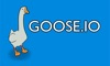 GOOSE.IO TV App Icon